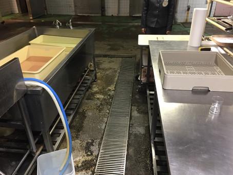 飲食店の床を傷つけない!洗剤ではなく酵素を使った清掃方法