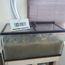 試験水槽.jpg
