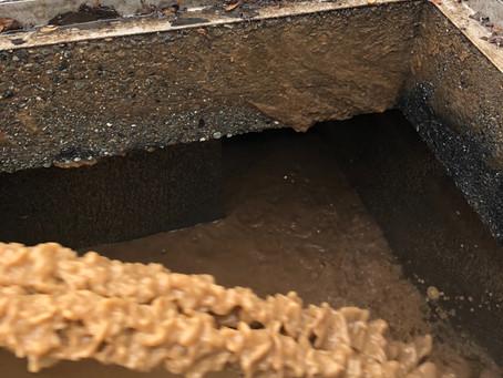 汚泥返送の重要性