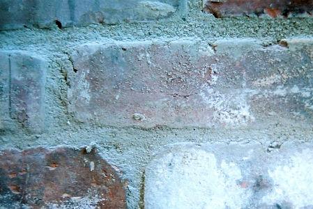 Brick wall in Youthologie lobby
