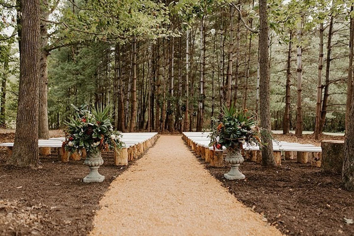 Wedding Site 1.jpg