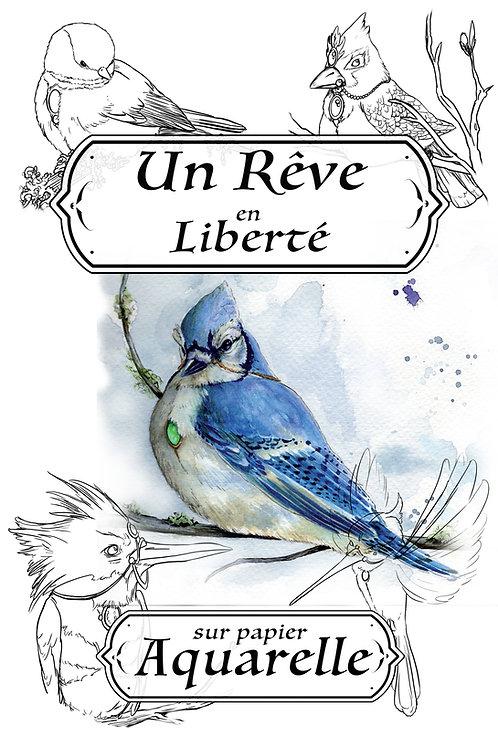 Un rêve en Liberté