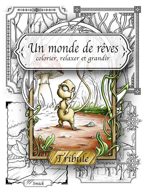 "Un monde de rêves ""Tirbule"""
