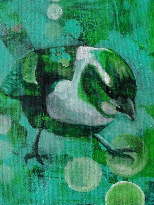 Early Bird: 13X19 Print