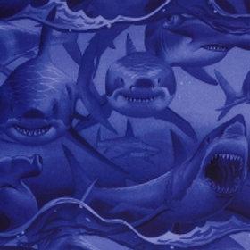Haaien blauw