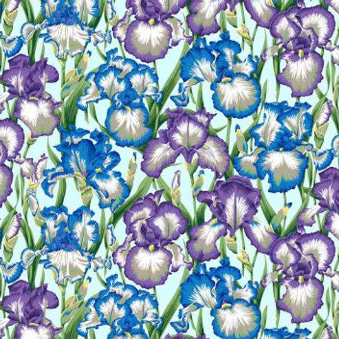 Iris cool