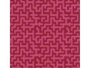 Maze (Odile Bailloeul)