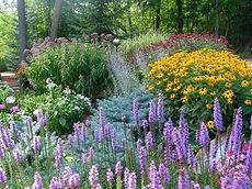 native garden.jpeg