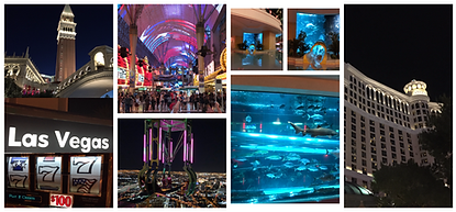 VIP-Night-Las-Vegas-City-Tour-TTofNV.png