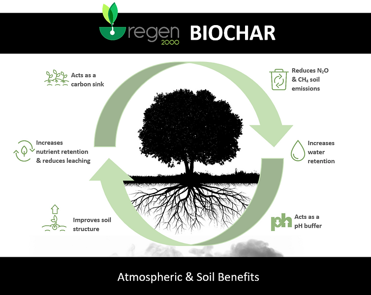 Biochar Cycle Rev_2.PNG