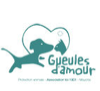 logo association gueules d'amour mayotte