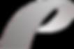 Logo Plancher droite clair.png