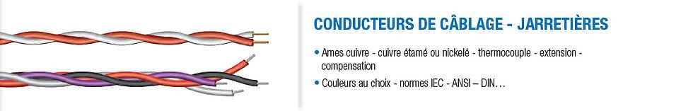 Conducteurs+et+jarretieres.jpg