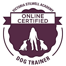 VSA-CDT-Online Badge.jpg