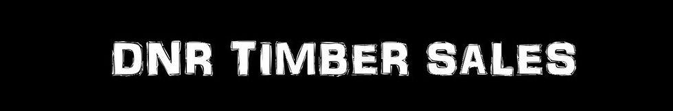 TIMBER SALE BANNER 9.jpg