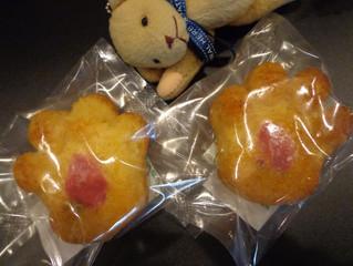 パピちゃんと桜と米粉のケーキ