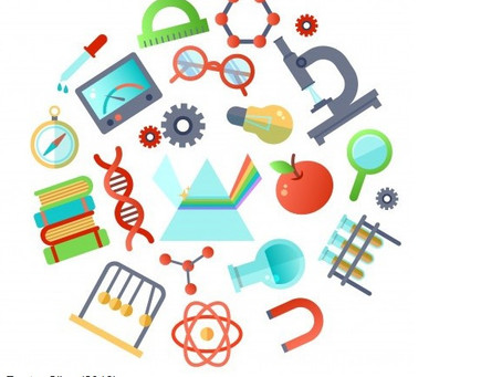 A questão da interdisciplinaridade na Ciência da Informação