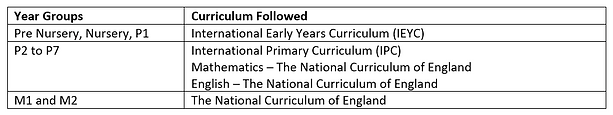 Curriculum table.PNG
