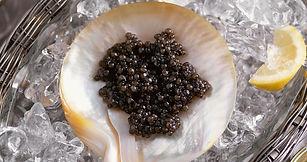 beluga-caviar-2018.e3cbb2fd.jpg
