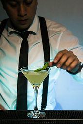 Skal Drinks Bantender a domicilio en Bogota