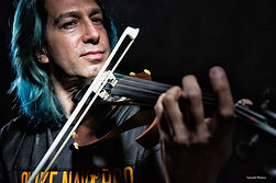 Quike Navarro House Violin blue02.JPG