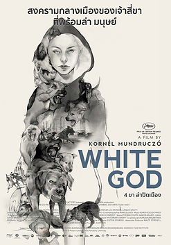 HAL DISTRIBUTION - White God