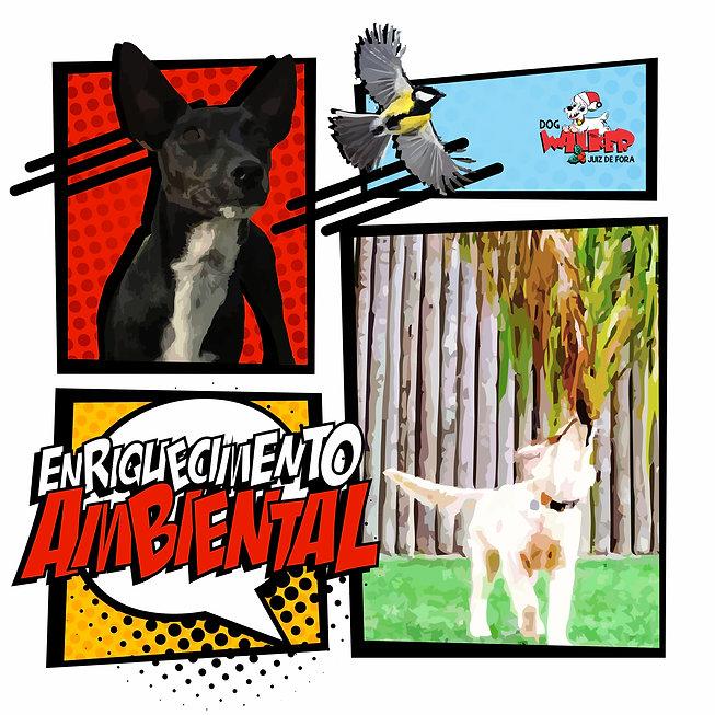 NOV27_enriquecimento ambiental.jpg