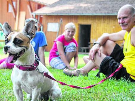 Kinder lernen Hunde besser verstehen