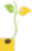 TMS_Saplings-yellow box.png
