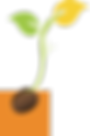 TMS_Seedlings-orange box.png