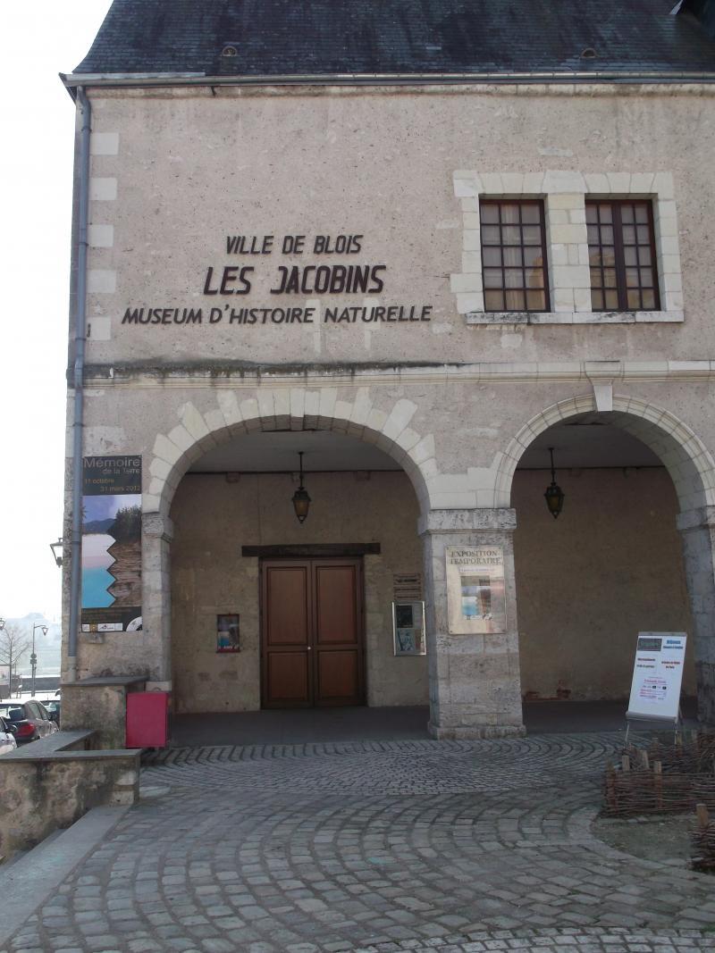 museum12-3-.jpg