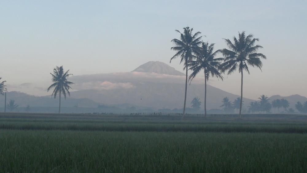 Liburan ke Magelang (Photo: Wikipedia - Author: Agus Miswanto)