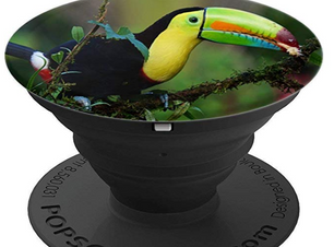 toucan popsocket.PNG