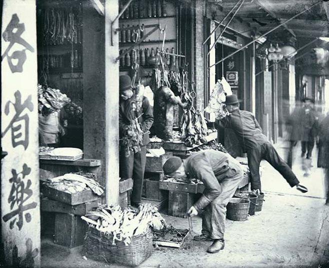Wilhelm Hester Chinatown,_San_Francisco,