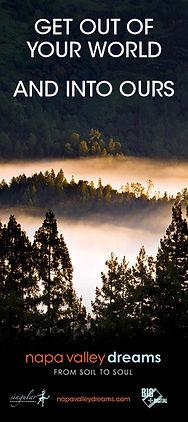 Napa Valley Dreams