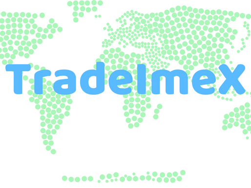 TradeImeX - A Solution of Your Trade