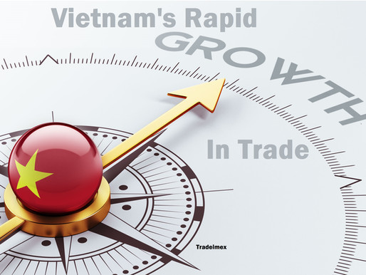 Vietnam's Rapid Growth in Trade