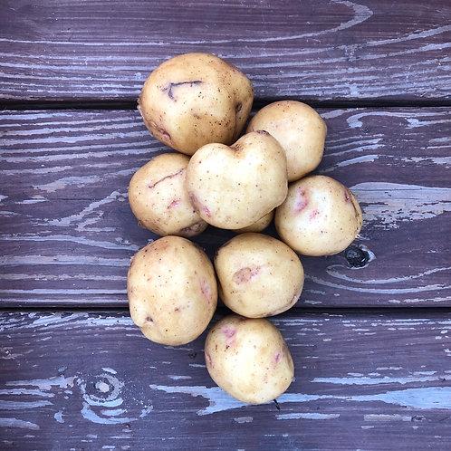 Yukon Gold Potatoes, Balsam Farms