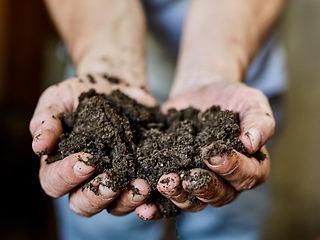 Erde: kompostierter Dung by Petra Rautenstrauch