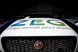 Jaguar_3
