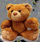 bear-678607_1920 (1)_edited.png