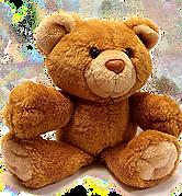 bear-678607_1920 (1).png