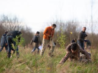 Educatief project 'Ondernemen met voedselbossen'