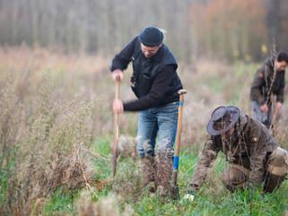 75 hectare nieuwe voedselbossen geven stevige impuls aan landbouwtransitie