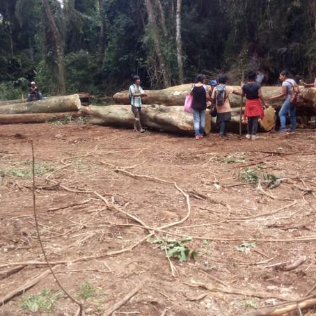 Preocupación por la situación de las comunidades de Campo Grande, en Misiones