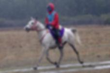 Modena Schofield-Foster riding Fortaleza