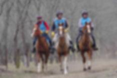Cindy Oster riding Charleville Nazarena,