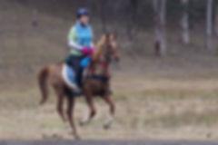 Julie White riding Tarkhim Shah Shalenah