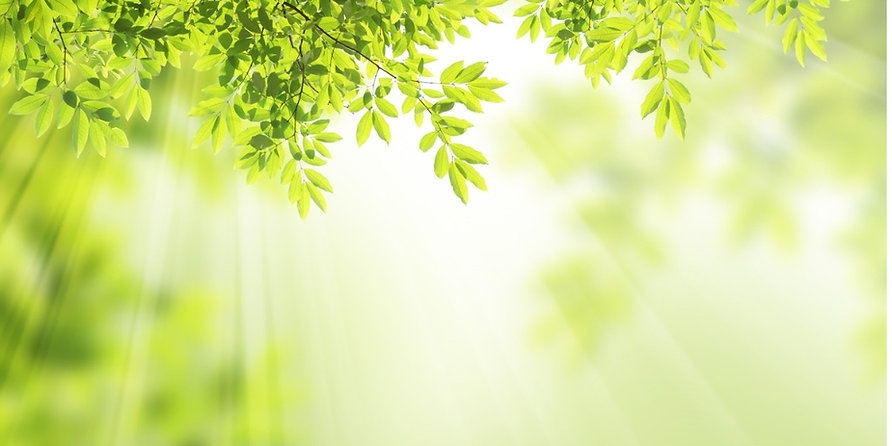 nature-background-picture-id482744067.jpeg