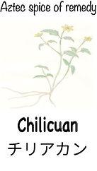 chilicuan link.jpg